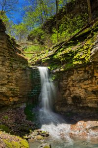 Wild Burro Falls, Upper Buffalo Wilderness, AR