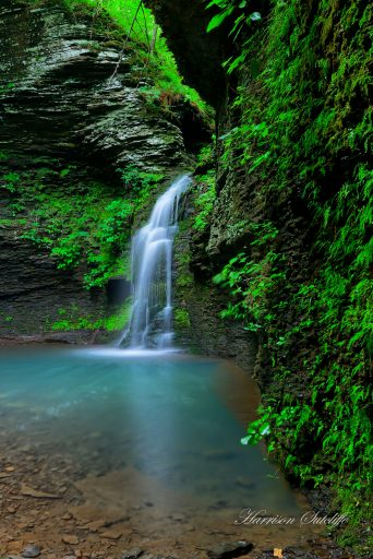 Fuzzybutt Falls - Ozark National Forest, Search Co., AR