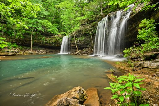 Twin Devil's Fork Falls - Richland Wilderness, Ozark National Forest