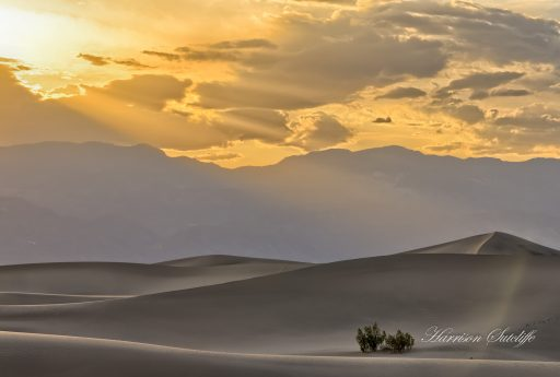 Sunset at Mesquite Dunes - Death Valley NP, CA