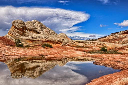 Arizona Red, White, and Blue - White Pocket, Vermilion Cliffs National Monument