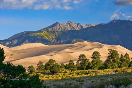 Early morning light at Great Sand Dunes, National Park, CO