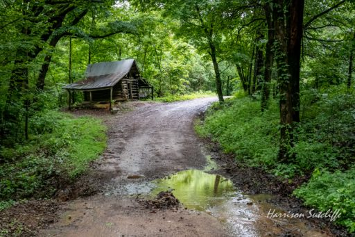Old shed in the Ozark National Forest